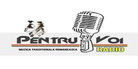 Radio Pentru Voi