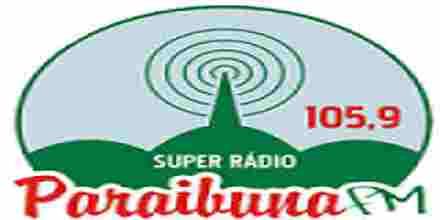 Paraibuna FM 105.9