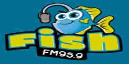 Radio Fish