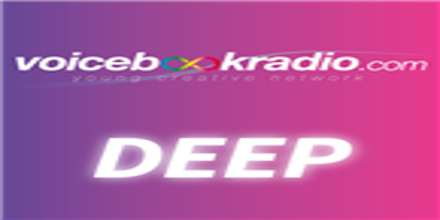 Voice Book Radio Deep