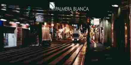 Palmera Blanca Radio IDM Stream