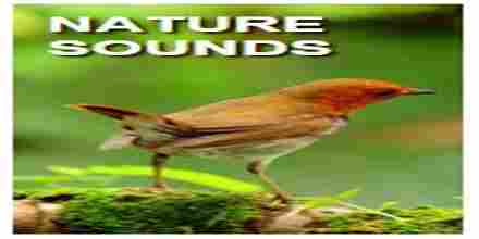 Chroma Radio Nature Sounds