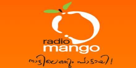 Radio Mango 91.9