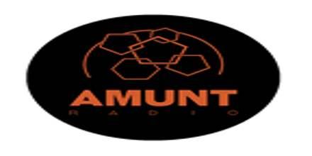 Amunt Radio