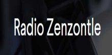 Radio Zenzontle