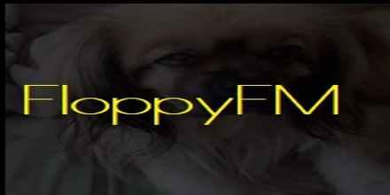 FloppyFM
