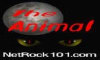Netrock 101