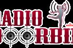 Radio Doorbin