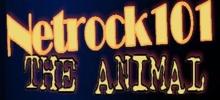 Netrock101