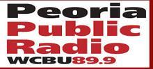 WCBUHD2 FM