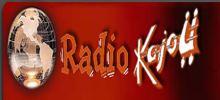 Radio anacardos