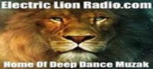 Electric Lion Radio