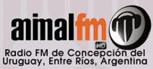 Animal FM
