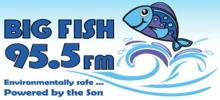 Big Fish 95.5 FM