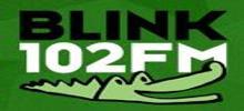 Radio Blink 102