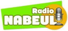 Nabeul Radio