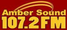 Янтарный Звук FM-