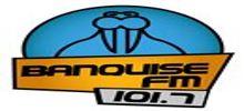 Banquise FM