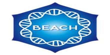 Positively Beach