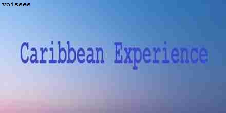 Voisses Caribbean Experience