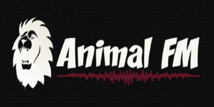 Animal FM Radio
