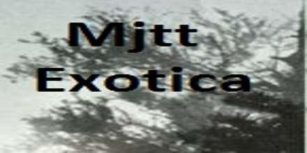 Mjtt Exotica