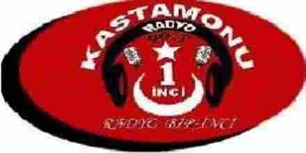 Radyo Bir Inci