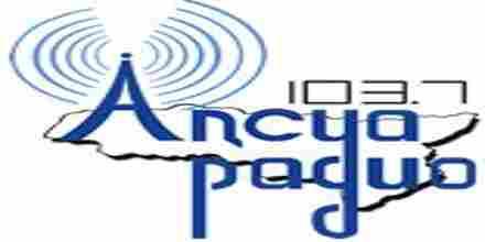 Apsua Radio