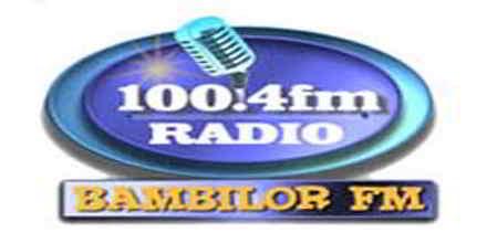 Bambilor FM