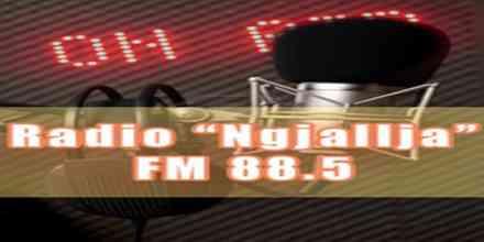 Radio Ngjallja