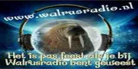 Walrus Radio