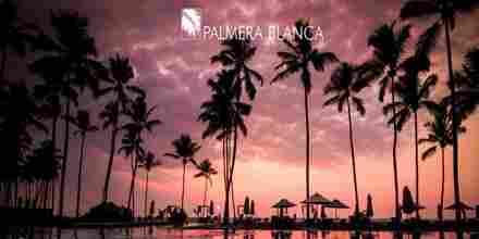 Palmera Blanca Radio Latino Stream