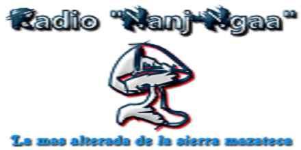 Radio Nanj Ngaa
