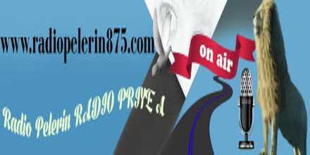 Radio Pelerin 875
