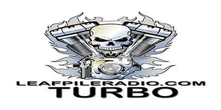 Leaf Pile Radio Turbo