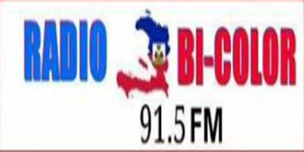 Radio Bicolor 91.5 FM