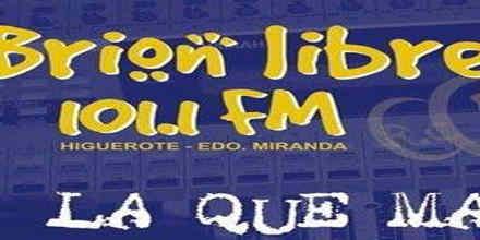 Brion Libre 101.1 FM