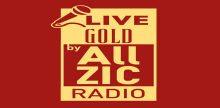 "<span lang =""fr"">Allzic Radio Live Gold</span>"