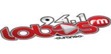 Lobos FM Durango