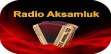 """<span lang =""""bs"""">Radio Aksamluk</span>"""