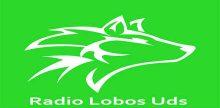 Radio Lobos Uds