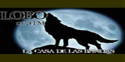 Lobo 107.3 FM