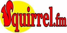 Squirrel FM