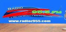 """<span lang =""""es"""">Radio Z 95.5 FM</span>"""