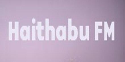 Haithabu FM