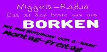 Niggel Radio