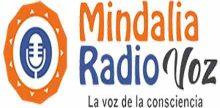 """<span lang =""""es"""">Mindalia Radio Voz</span>"""