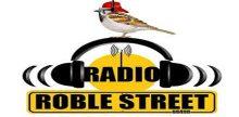 Radio Roble Street